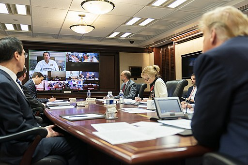 Governors' Video Teleconference on Partnership for the COVID-19 Response  (Official White House Photo by Andrea Hanks).